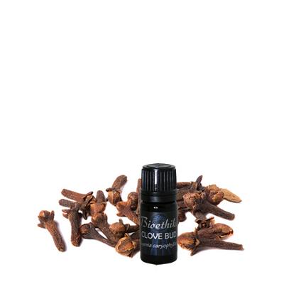 Clove Bud Essential Oil, 5 ml